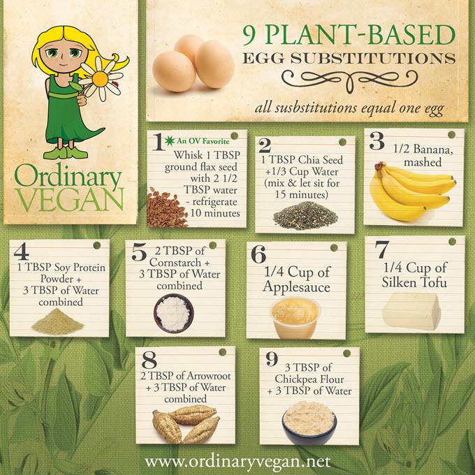 EGG 9 Plant Based Egg Substitutions