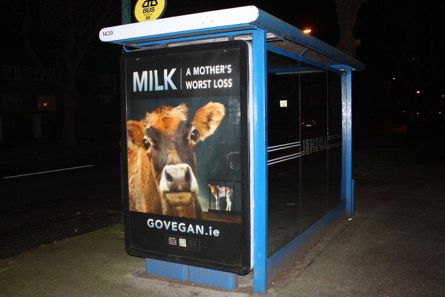 Go Vegan World Campaign - Republic of Ireland