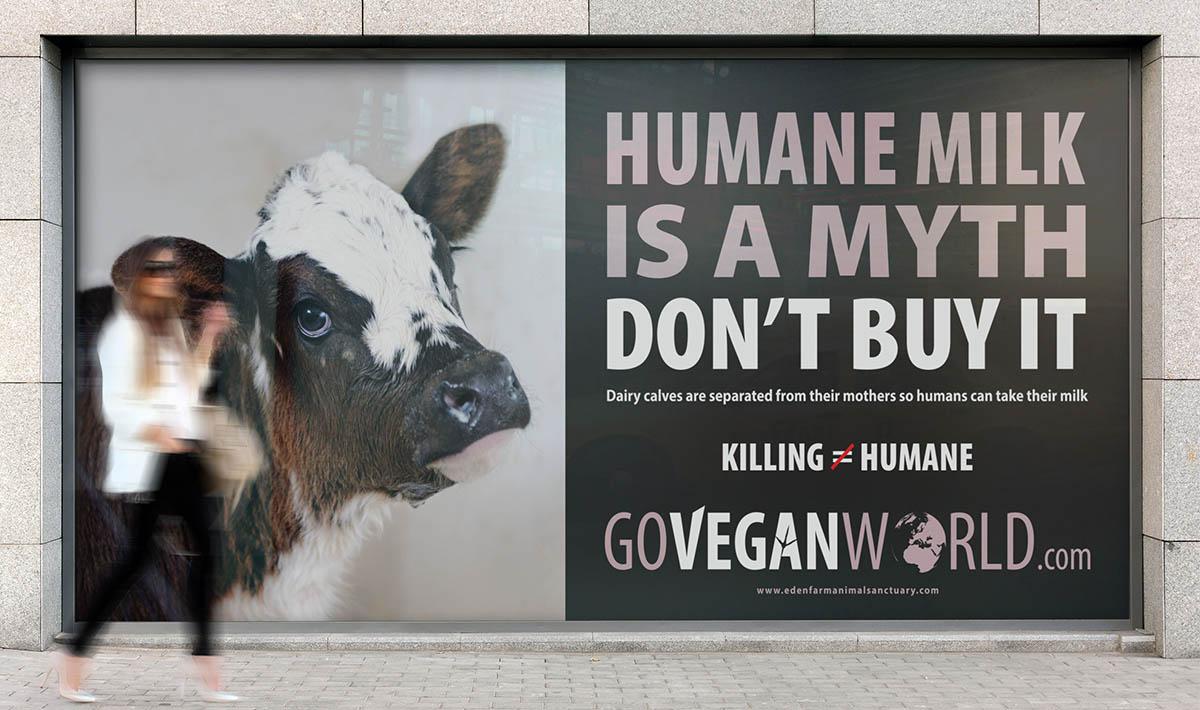 Go Vegan World mockups UK