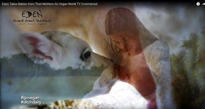 Go Vegan World launch first Vegan TV Advertising Campaign