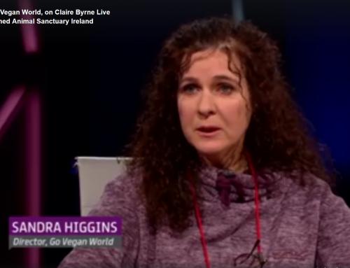 RTE Claire Byrne Live interviews Sandra Higgins