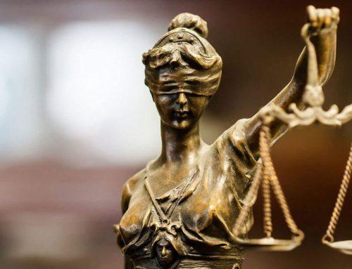 Go Vegan World welcomes vegan rights lawyer Barbara Bolton