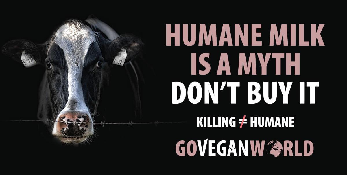 Vegan Rights in the UK