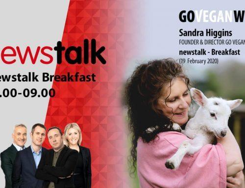 Vegan Rights in the Workplace: Sandra Higgins is interviewed on Newstalk radio